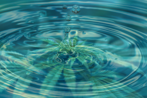 Image of water droplets causing ripples on a water surface