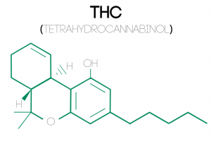 an illustration of Tetrahydrocannabinol's (THC) molecular structure
